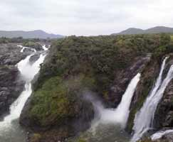 Tour Package Mudumalai